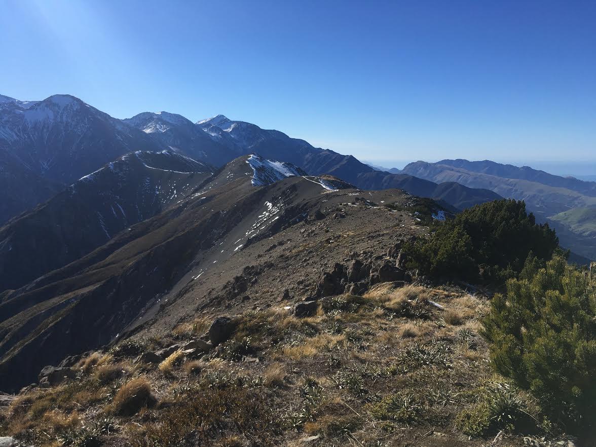 Mount Fyffe Hike Kaikoura